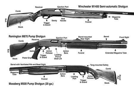 ShotgunWomen2-2-450