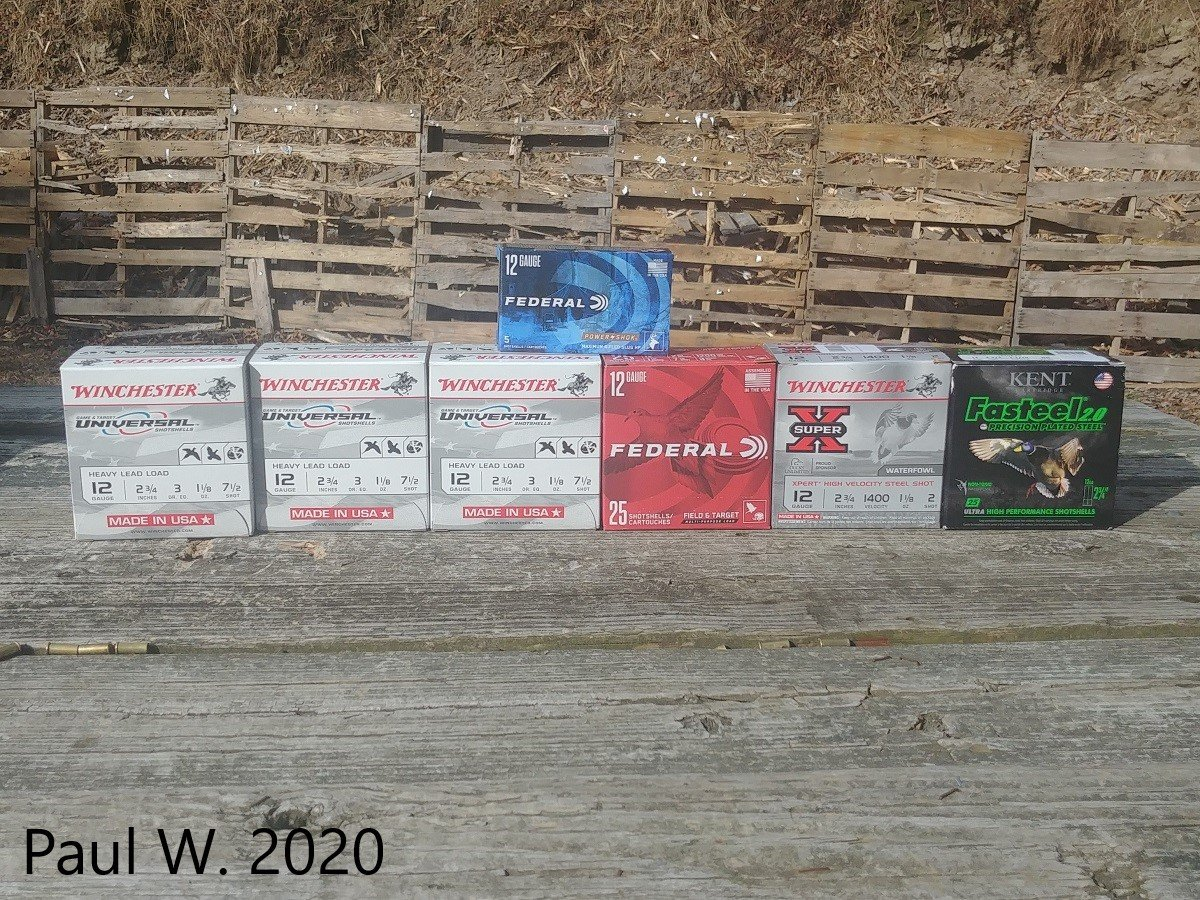 Charles Daly 601 DPS Ammo Selection